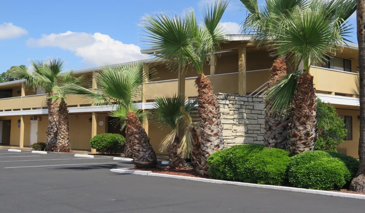 Bonanza Inn Yuba City - Palm trees and landscaping at Bonanza Inn